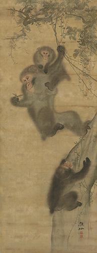 猿図 森狙仙筆 江戸時代・19世紀