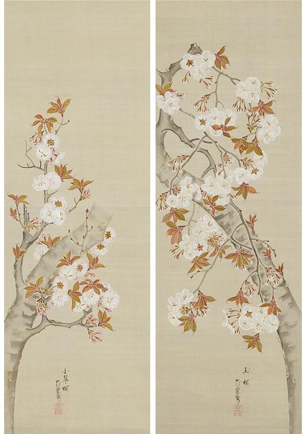 桜花図 作品画像