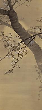 Cherry Blossom Under Misty Moon