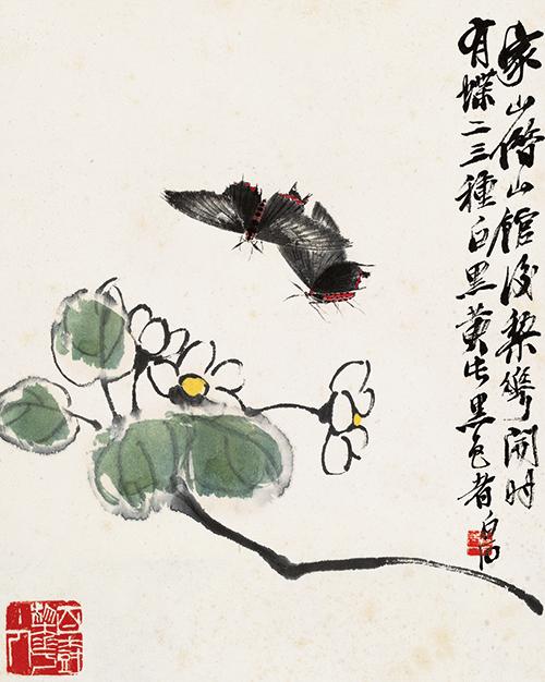 工虫画冊(第一図:白花と鳳蛾)