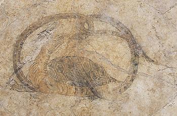 キトラ古墳壁画 玄武