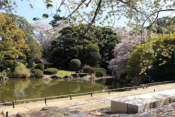 庭園リニューアル(全面開放)