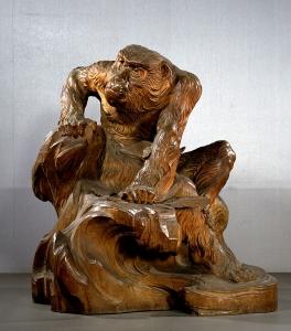 """Image of """"Aged monkey"""""""