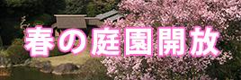 Museum Garden Opening (Spring)