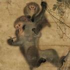 "Image of ""Monkeys (detail), By Mori Sosen, Formerly owned by Kuki Ryuichiro, Edo period, 19th century, Formerly owned by Kuki Ryuichiro, gift of Nagai Iwao"""