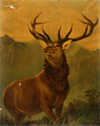 """Image of """"Monarch of the Glen, Original by Edwin Henry Landseer, 19th century (Gift of Glasgow Museum)"""""""