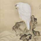 "Image of ""Studies of Hawks with Edits by Tokugawa Yoshimune (detail), By Kanō Hisanobu and Tokugawa Yoshimune, Edo period, 18th century"""
