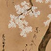 Cherry Tree and Spring Plants<br /> By Ogata Kenzan, Edo period, 18th century (Gift of Mrs. Yamamoto Tomiko and   Mr. Yamamoto Kenji)<br /> March 10 - April 19, 2015