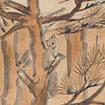 Squirrel (1st  period)